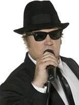 Adult Blues Brothers Sunglasses [30613]