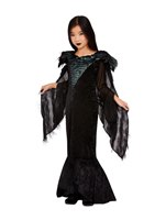 Child Deluxe Raven Princess Costume [63094]
