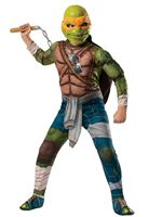 Child Ninja Turtles Michaelangelo Costume