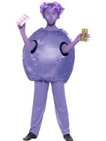 Child Roald Dahl Violet Beauregarde Costume