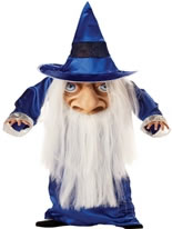 Child Wizard Mad Hatter Costume