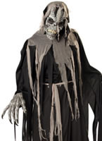 Adult Crypt Crawler Costume