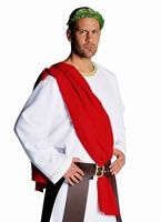 Adult Deluxe Julius Caesar Costume