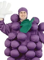 Adult Purple Grapes Costume [9500]