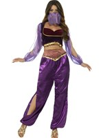 Ladies Arabian Princess Costume