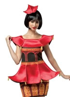 Ladies Pagoda Costume