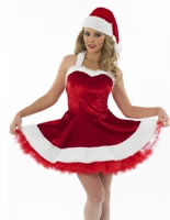 Ladies Sexy Santa Tutu Costume