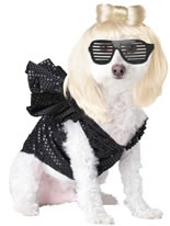 Dog Lady Gaga  Costume [PET20111]