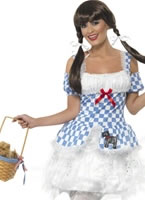 Adult Light Up Dorothy Costume