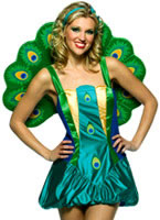 Light Weight Peacock Costume