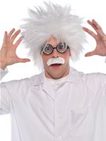 Mens Mad Scientist Wig Kit