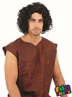Mens Medieval Curly Black Wig