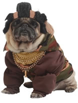 Dog Mr T Costume