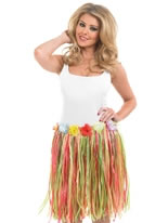Adult Multi Coloured Grass Skirt