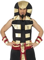 Adult Pharaoh Costume [20381]