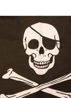 Pirate Flag [92121]