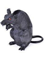 Rat Sitting