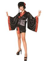 Adult Geisha Girl Costume [3162]