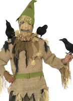 Scared Crow Costume [28059]