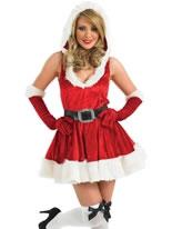 Adult Sexy Lady Santa Costume