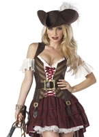 Sexy Swashbuckler Pirate Costume
