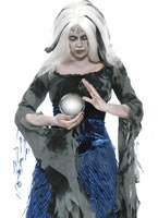 Adult Sinful Soothsayer Costume [29096]