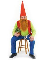 Adult Sneezy Gnome Costume