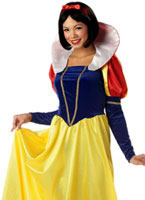 Adult Fairytale Snow Costume [00961]