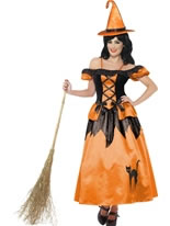 Adult Storybook Witch Costume [33272]