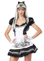 Teen Dark Alice Costume