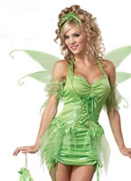Adult Tinker Fairy Costume