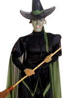 Wicked Witch Costume from Wizard of Oz