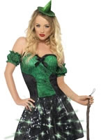 Adult Fever Wicked Witch Light Up Costume