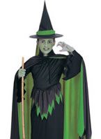 Wizard of Oz Wicked Witch Childrens Costume