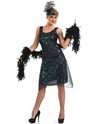 Adult 1920's Party Dress Costume Thumbnail
