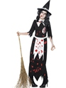 Adult Zombie Salem Witch Costume Thumbnail