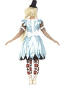 Adult Alice in Blunderland Costume  - Side View - Thumbnail