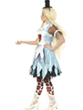 Adult Alice in Blunderland Costume  - Back View - Thumbnail