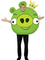 Angry Birds Green Pig Costume Thumbnail