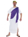 Adult Deluxe Mens Toga Costume Thumbnail