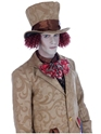 Adult Mad Hatter Costume  - Back View - Thumbnail