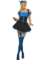 Adult Fever Wicked Witch Blue Costume Thumbnail