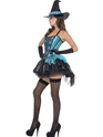 Adult Fever Witch Devine Costume  - Back View - Thumbnail