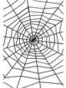 Giant Spider Web Thumbnail