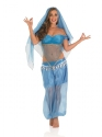 Adult Arabian Princess Costume Thumbnail