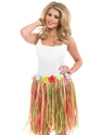 Adult Multi Coloured Grass Skirt Thumbnail