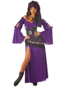 Mystic Seductress Gypsy Costume