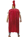 Adult Roman Warrior Deluxe Costume  - Back View - Thumbnail