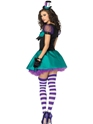 Adult Teacup Mad Hatter Costume  - Back View - Thumbnail