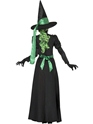 Adult Wicked Witch Costume  - Side View - Thumbnail